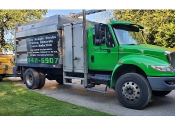 Maple Ridge tree service Paul Bunyan Tree Service