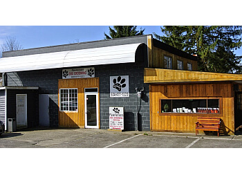 Maple Ridge pet grooming Pawparazzi Dog Grooming