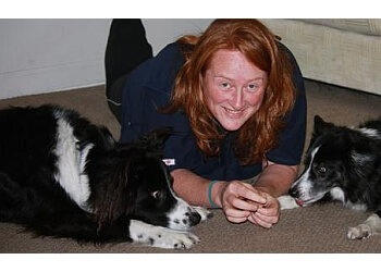 Richmond dog trainer Pawsitive Connection Dog Training & Services