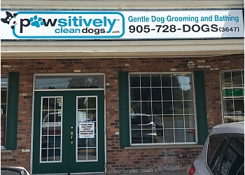 Whitby pet grooming Pawsitively Clean Dogs Inc.