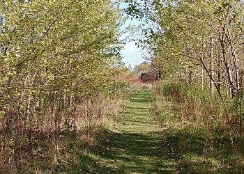 Sarnia hiking trail Perch Creek Habitat Management Area