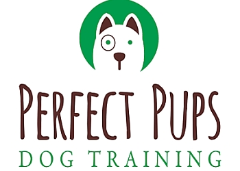 Waterloo dog trainer Perfect Pups Dog Training