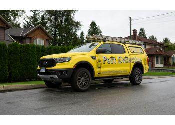 Chilliwack pest control Pest Detective