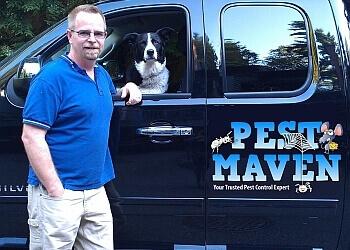 North Vancouver pest control Pest Maven