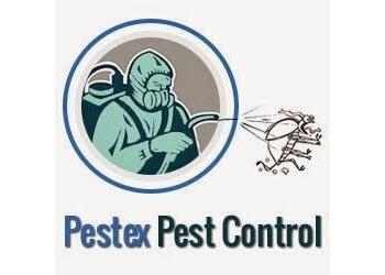 Hamilton pest control Pestex Pest Control