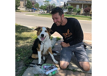 Vaughan dog trainer Pet To Pal Dog Training