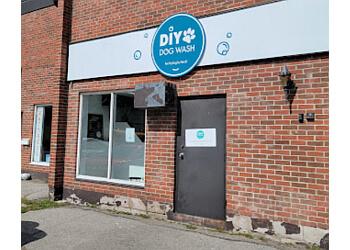 Petstyling By Becki Peterborough Pet Grooming