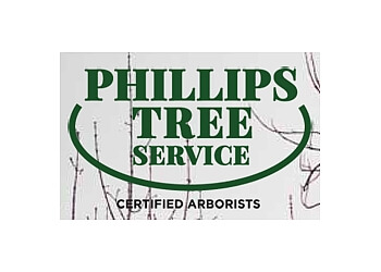 Kingston tree service Phillips Tree Service