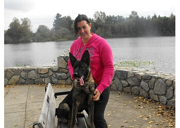 Dog Trainer Langley Bc