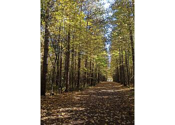 Ottawa hiking trail Pine Grove Trail