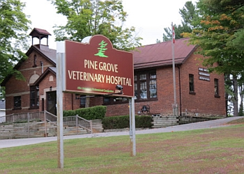 Orillia veterinary clinic Pine Grove Veterinary Hospital