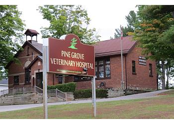 Orillia veterinary clinic Pine Grove Veterinary Hospital