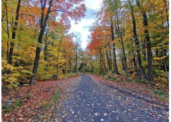 Gatineau hiking trail Pink Lake Trail