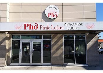 Surrey vietnamese restaurant Pink Lotus Pho