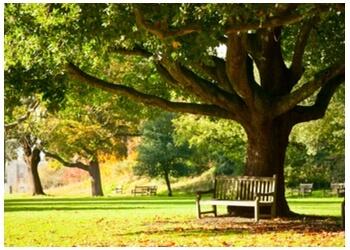 St Johns public park Pippy Park
