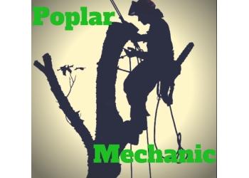 Medicine Hat tree service Poplar Mechanics Tree Services Ltd