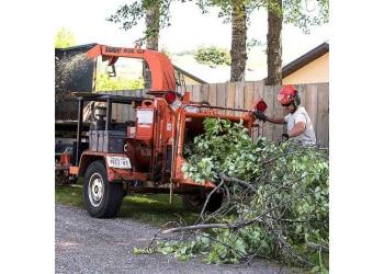 Prairie Woodlands Tree Care Ltd.