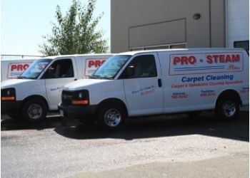 Pro-Steam Plus Carpet Cleaning