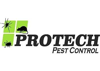 Port Coquitlam pest control Protech Pest Control