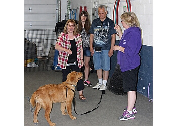 Orangeville dog trainer PuppyTails Training & TTouch for Animals