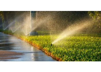 Welland lawn care service Quality For Less Lawn Care Services