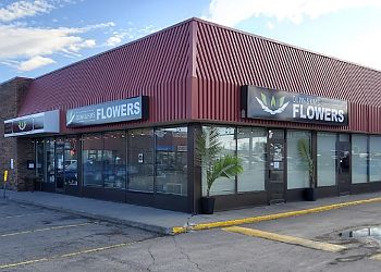 Saskatoon florist Quinn & Kim's Grower Direct
