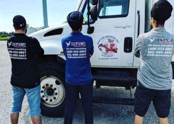 Brampton moving company Raptor Movers