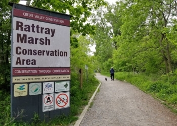 Mississauga hiking trail Rattray Marsh Conservation Area