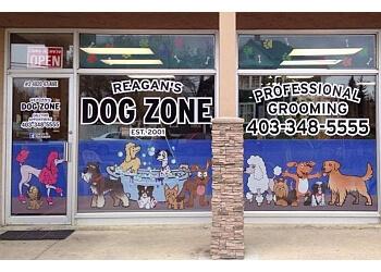 Red Deer pet grooming Reagan's Dog Zone
