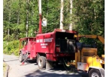 Chilliwack tree service Rim Tree Services