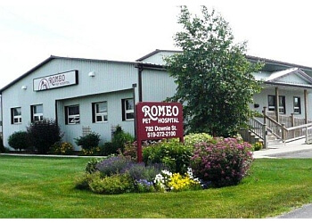 Stratford veterinary clinic Romeo Pet Hospital Hours