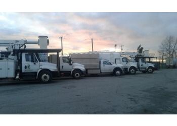 Delta tree service Royal Wood Tree Services LTD.