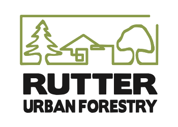 Thunder Bay tree service Rutter Urban Forestry