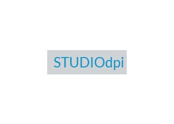 Orillia web designer STUDIO dpi