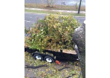 Sault Ste Marie tree service SUPERIOR TREEWORKS