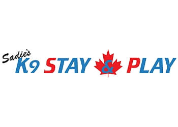 Edmonton pet grooming Sadie's K9 Stay & Play