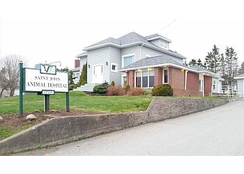 Saint John veterinary clinic Saint John Animal Hospital Ltd.