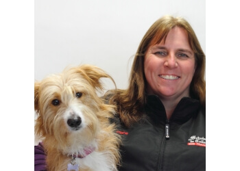 Burlington dog trainer Scholars In Collars Dog Training