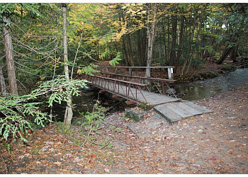 Orillia hiking trail Scout Valley Loop Trail