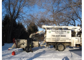 Edmonton tree service Seedling to Stump