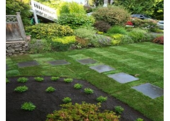 Seymour Lawn Maintenance