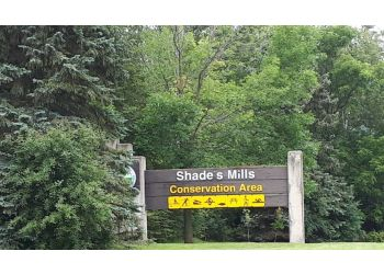 Cambridge public park Shade's Mills Conservation Area