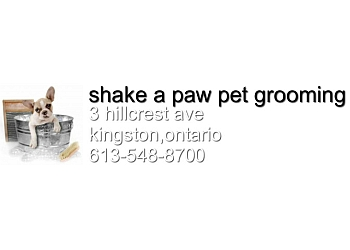 Kingston pet grooming Shake a Paw Pet Grooming
