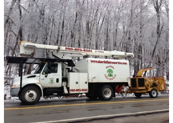 Welland tree service Shorthills Tree Service Inc.