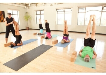 3 best yoga studios in milton on  expert recommendations