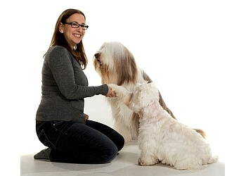 Vaughan dog trainer Sit Stay Learn