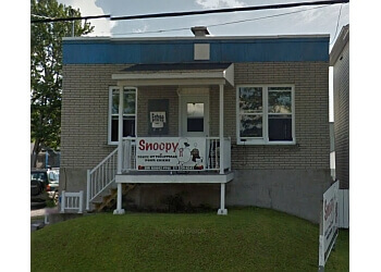 Shawinigan pet grooming Snoopy Tonte & Toilettage
