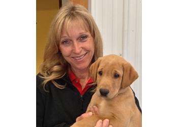 Kamloops dog trainer Someday Retrievers