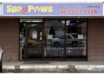 Calgary pet grooming Spa 4 Paws