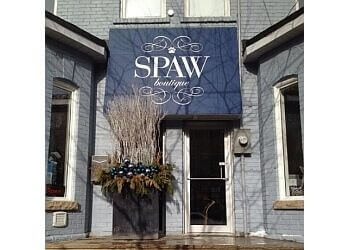 Toronto pet grooming Spaw Boutique